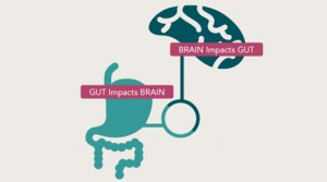 Gut impacts brain
